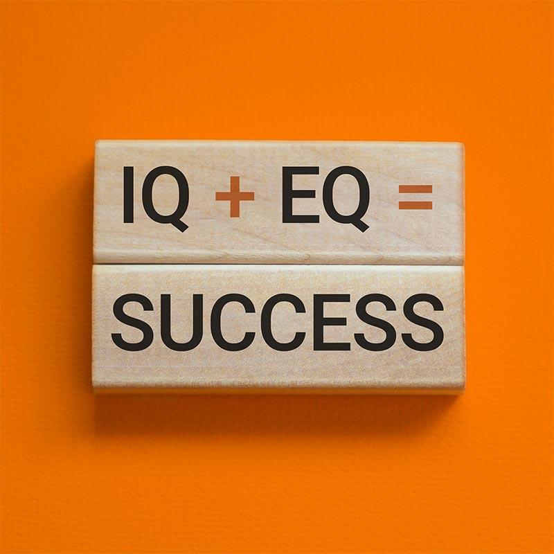 IQ+EQ=Success; emotional intelligence training for leaders